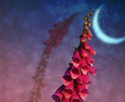 3/6が水星逆行開始、3/7は新月。相場変化に注意が必要なアストロジー的重要日が続く