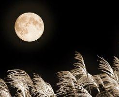 2019年の十五夜(中秋の名月)はいつ? 「十五夜」と「満月」の日が重なるとは限らない