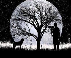 月の満ち欠けパワーは、相場/投資家の気持ちにも影響を与える