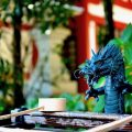 【書評】成功している人は、どこの神社に行くのか?(八木龍平 著)(★3)