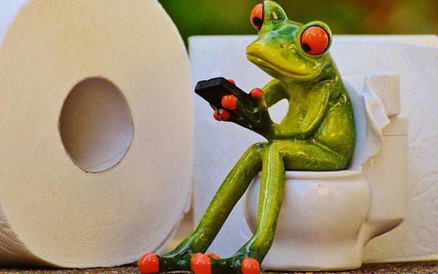 トイレットペーパーはシングルとダブルどっちがお得?[S]が1.6倍年間使用量少なく節約。防災グッズとしても優秀