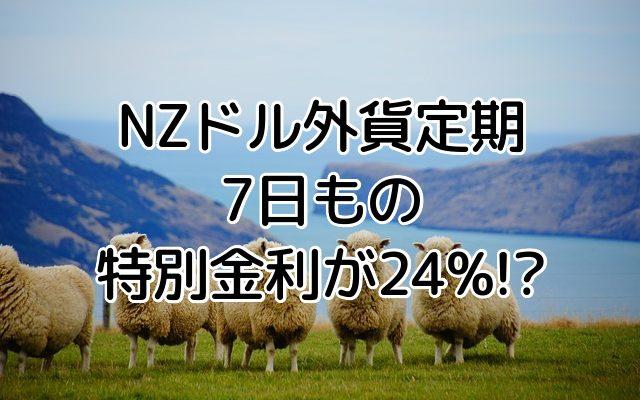 楽天銀行、NZドル外貨定期預金7日もの特別金利24%ってお得?!外貨預金手数料を考慮した利益はいくら?