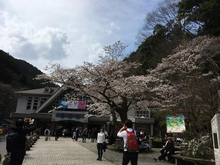 高尾山ケーブル・リフト乗車駅