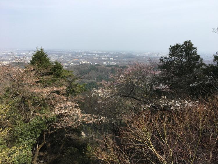 高尾山から眼下風景