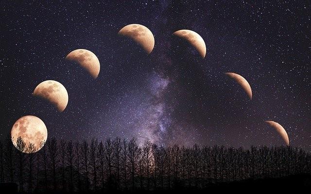 秋の月がきれいな理由は