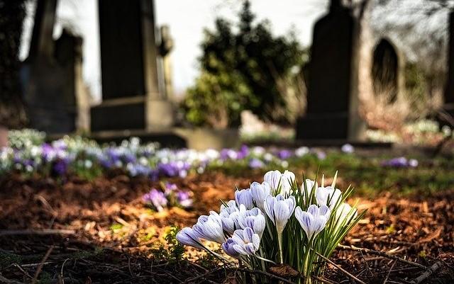 増加する葬儀なしの火葬・おひとり様の葬式