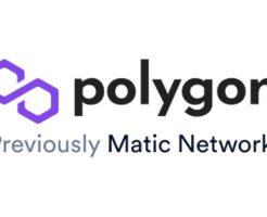 Polygonチェーンの利用開始直後、少量のガス代 0.001 MATICをタダで手に入れる方法